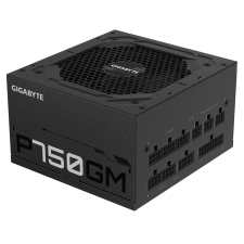 750Watt - GIGABYTE GP-P750GM