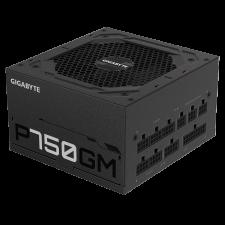 750Watt - GIGABYTE GP-P750GM